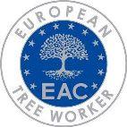 robimywzieleni European treeworker